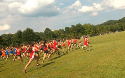 Cross Country Teams Compete in Warriors Meet